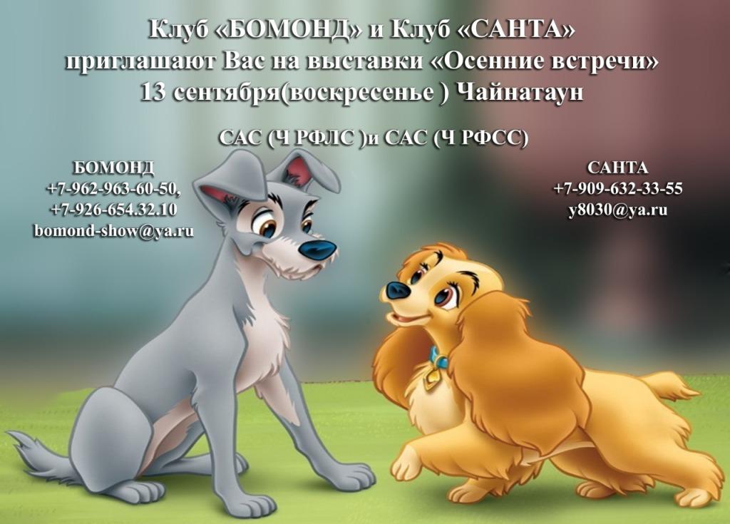 Бомонд клуб москва клубы калининграда за 30 ночные